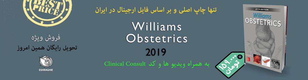 ویلیامز-۲۰۱۹