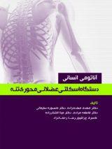 آناتومی انسانی دستگاه اسکلتی عضلانی محوری (تنه)