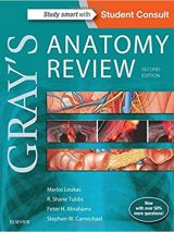 Gray's Anatomy Review 2015