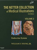 The Netter Collection Of Medical Illustrations: The Endocrine System : Volume 2