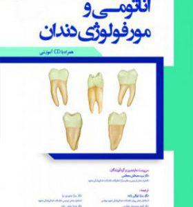 آناتومی و مورفولوژی دندان