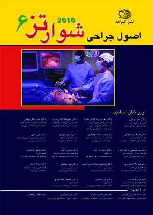 ۷da3_schwqrtz-2010-vol-6-yellow-word