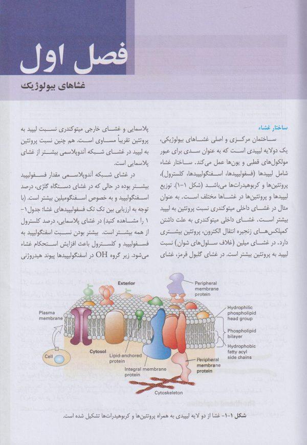 فصل اول بیولوژی سلولی مولکولی محمدنژاد | ویرایش سوم 1400 - چاپ هشتم