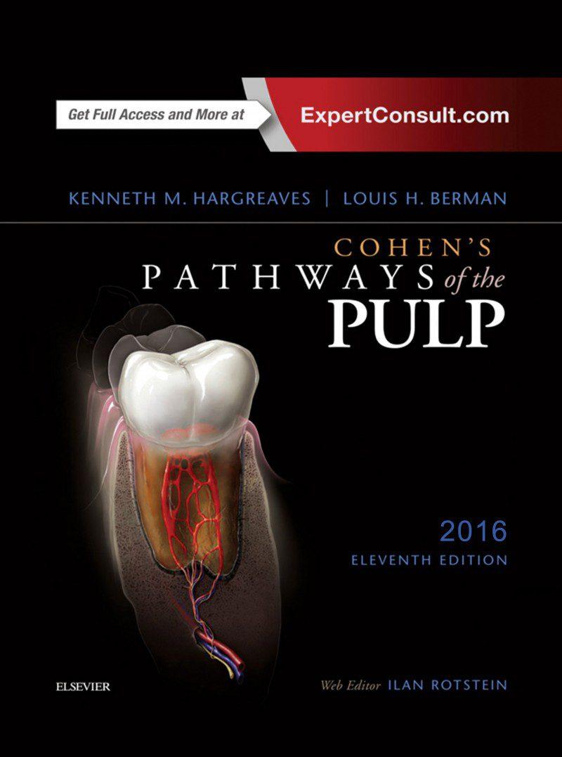 cohen pathways of the pulp 2016 اشراقیه افست