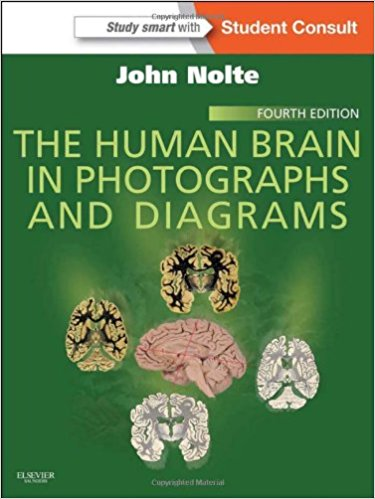 The-human-brain-in-photographs-and-diagrams-2013-esh-افست-اشراقیه