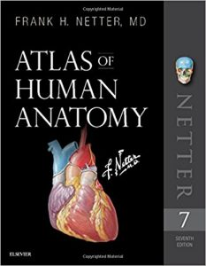 کتاب آناتومی اطلس نتر 2019 - Netter atlas of Human anatomy - افست با تخفیف ویژه - ارجینال
