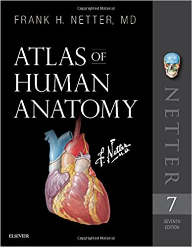 Atlas of Human Anatomy - 2019 + Video Consult - اطلس آناتومی نتر