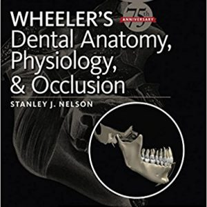 Wheeler's Dental Anatomy, Physiology And Occlusion 2015