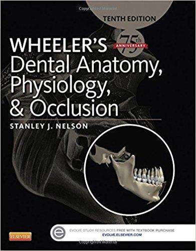 Wheeler's-dental-anatomy-physiology-and-occlusion-2015-nelson-افست-اشراقیه-آناتومی-اکلوژن-۲۰۱۵