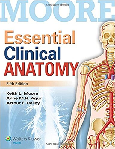 Essential clinical anatomy-Moore—