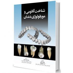 شناخت آناتومی و مورفولوژی دندان (تمام رنگی)
