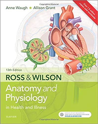Ross-and-wilson-اشراقیه-۲۰۱۸