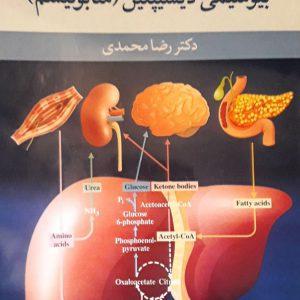 درسنامه بیوشیمی پزشکی : بیوشیمی دیسیپلین ( متابولیسم )