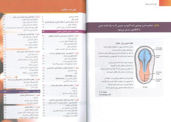 خرید کتاب جنین شناسی لانگمن فارسی 3