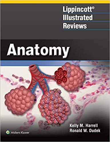 Lippincott Illustrated Reviews Anatomy