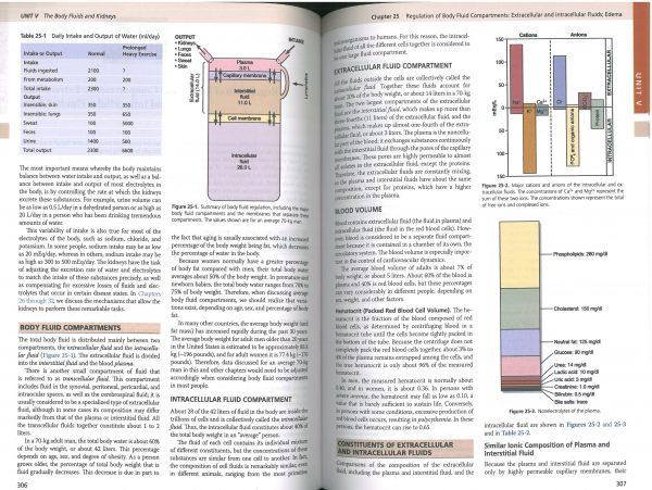 نمونه چاپی کتاب فیزیولوژی پزشکی گایتون تکست افسا 2021