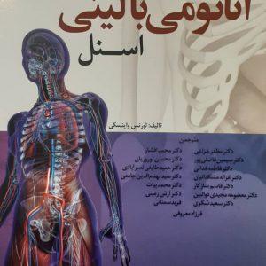 کتاب آناتومی بالینی اسنل ۲۰۱۹ – اندام ( ابن سینا )