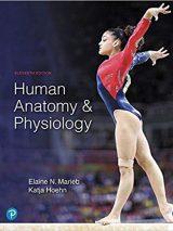 Human Anatomy & Physiology – 2019