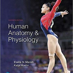 Human Anatomy & Physiology – 2019