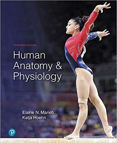 آناتومی و فیزیولوژی انسان - 2019