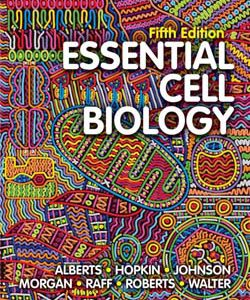 ۲۰۱۹ Essential Cell Biology – Alberts