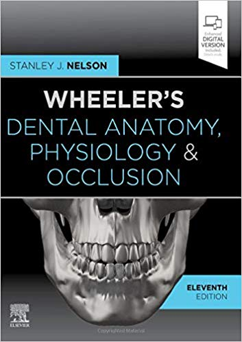 Wheeler's Dental Anatomy, Physiology and Occlusion - 2020
