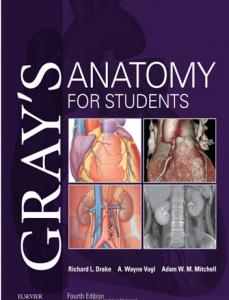 کتاب تکست آناتومی گری برای دانشجویان - Gray for student - افست با تخفیف ویژه - مشابه ارجینال