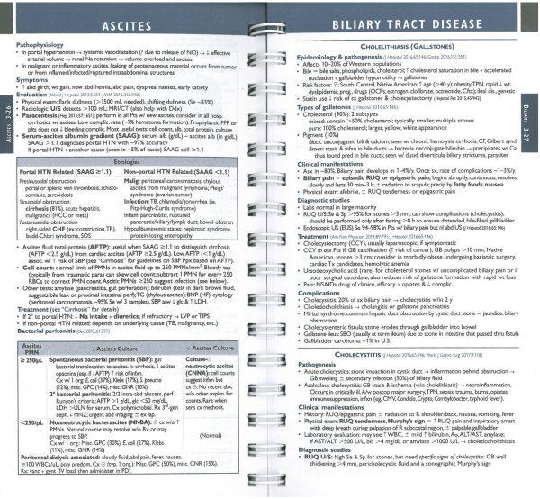 هندبوک داخلی ماساچوست 2020 - 2