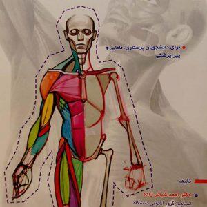 آناتومی عمومی – دکتر احمد شبانی زاده ، دکتر محمد حسن تقوی