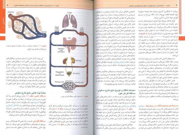 نمونه ترجمه کتاب فیزیولوژی پزشکی گایتون هال 2021 - ترجمه دکتر حائری روحانی
