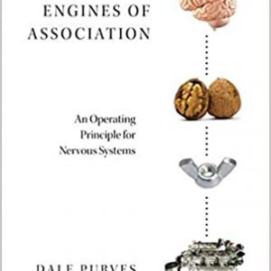 Brains As Engines Of Association: An Operating Principle For Nervous Systems | 2019