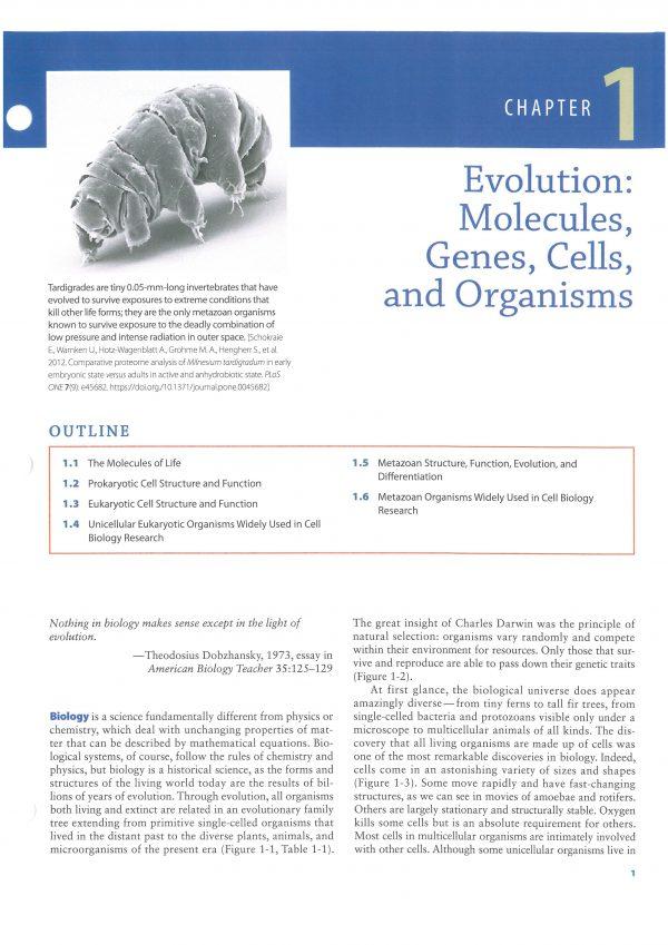 نمونه چاپ کتاب افست زیست شناسی لودیش 2021 - کتاب افست زیست شناسی لودیش - بیولوژی لودیش 2021   تمام رنگی - کاغذ تحریر