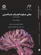 مبانی علوم اعصاب شناختی | راهنمای مقدماتی