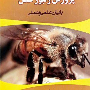 کتاب پرورش زنبور عسل | با بیان علمی و عملی