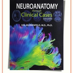Neuroanatomy Through Clinical Cases 3rd Edition | 2021